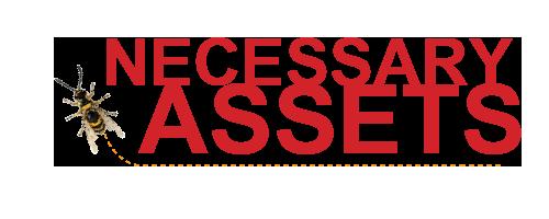 Necessary Assets Logo
